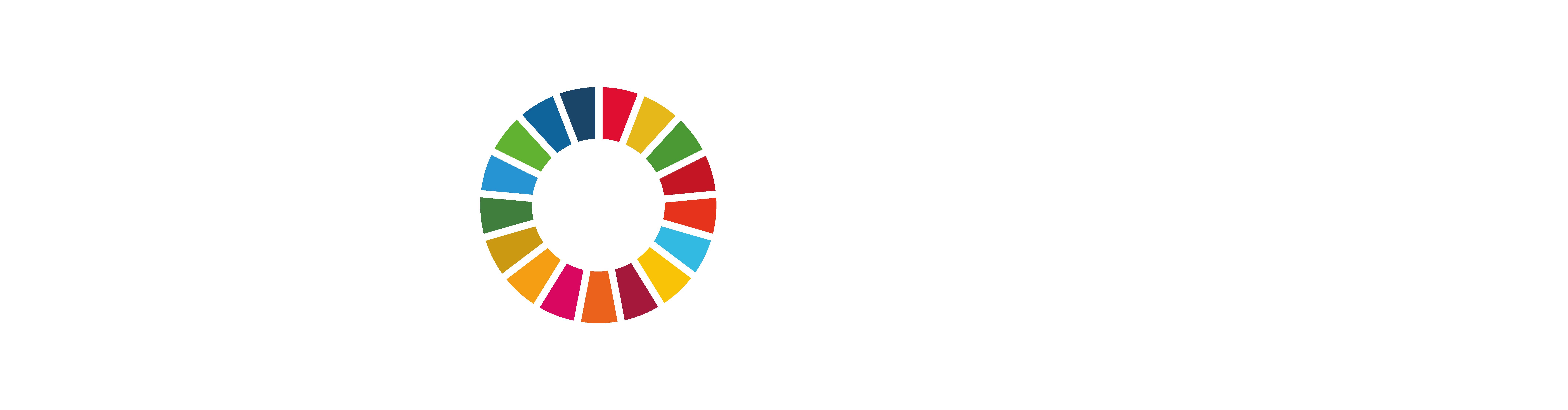 MY World México